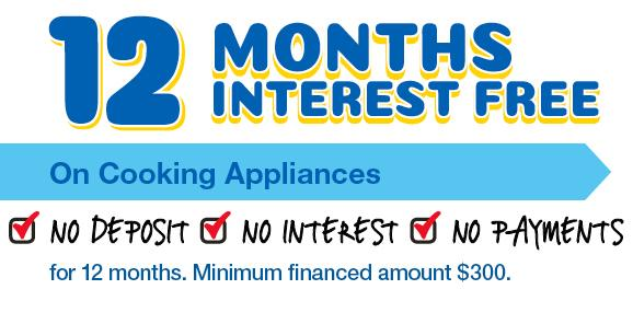 12 Months Interest Free – No Payments